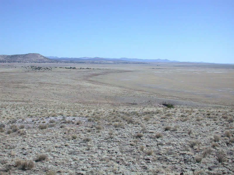View north along the west flank of the C-N Basin. Large, prominent spit formed by 2116m paleo-lake is apparent to the left. In the distance, above and right of center of photo, as two isolated trees. They are just left of the Ake site. (V.T. Holiday)