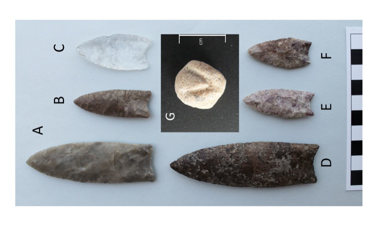 Figure 6. Artifacts from locality 1: out-of-context points (A, B, C), points found in the bone bed (D, E, F), and rounded and incised bone (G).