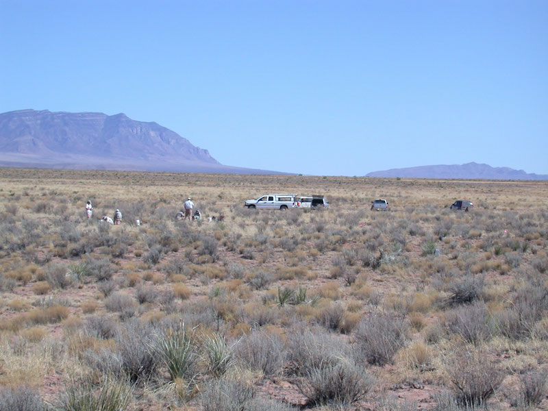 "Excavations under way at the ""swale"" area of the Mockingbird Gap, looking southeast toward the Oscura Mountains and Mockingbird Gap itself."